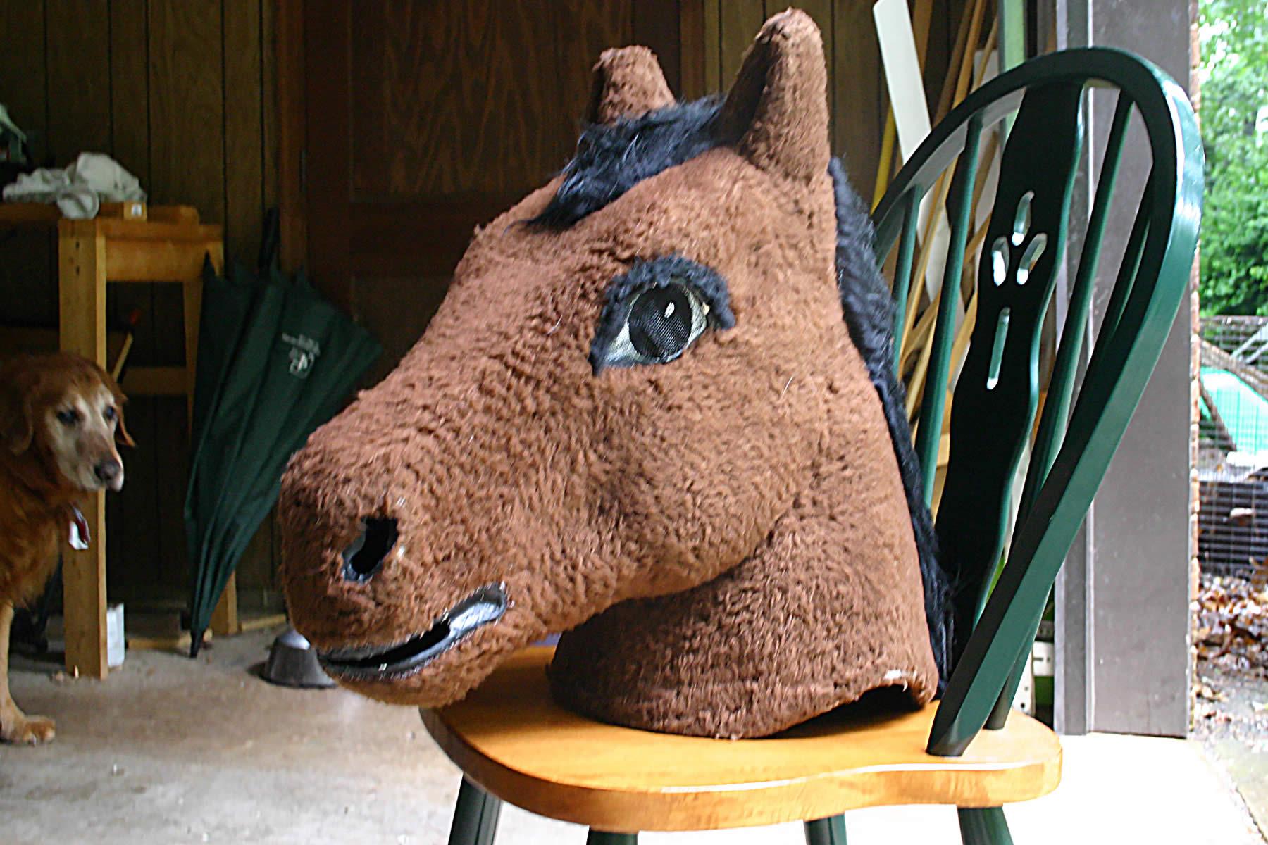benjamin with horse head