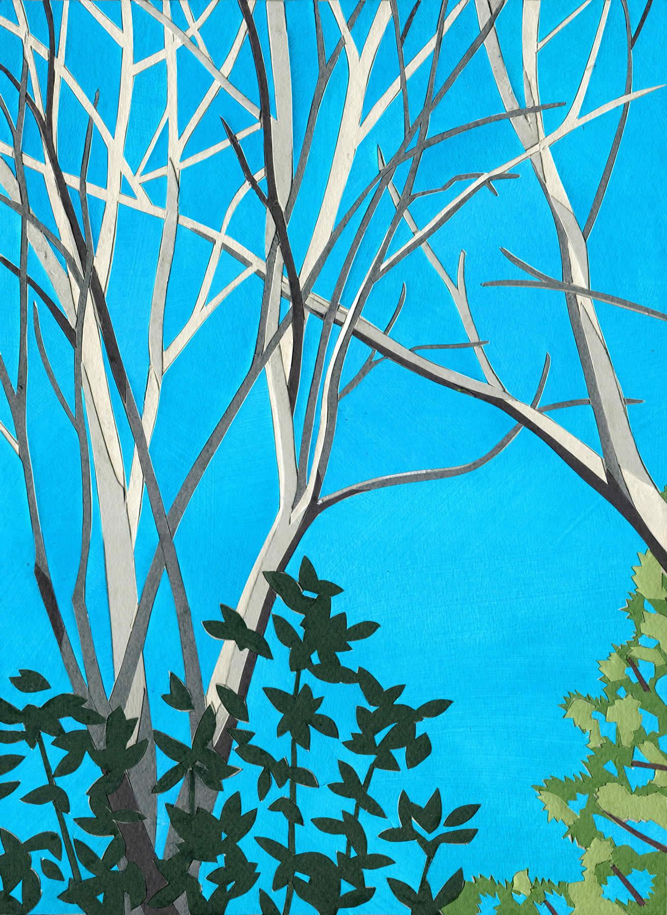 Backyard Treetops
